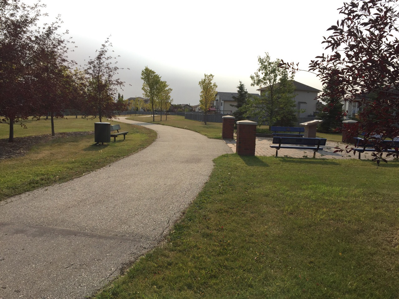 Pat Gorman Park
